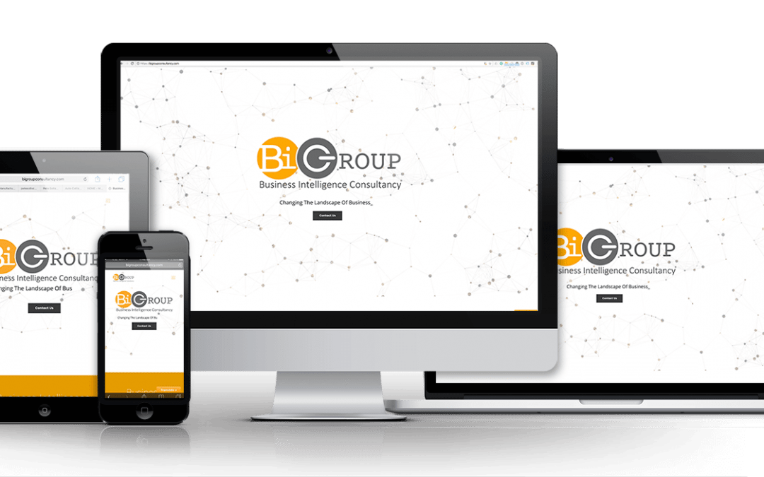 BI Group Consultancy